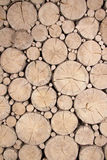 Cutted wooden logs Royalty Free Stock Photos