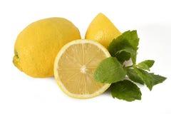 Cutted-Zitronen mit einem Stück der Minze Lizenzfreie Stockfotografie