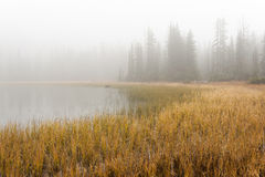 Cutthroat Lake in the fog. A small lake in the North Cascade Mountain range is surrounded by fog on this autumn day in October giving it a spooky feel stock photography