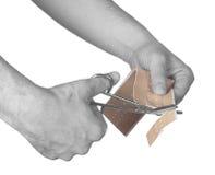 Cutting adhesive bandage. On white Stock Image