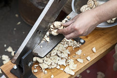 Cutting an Angelica Roots. Chinese Herbs Market Cutting an Angelica Root for Sale stock images