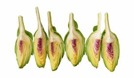 Cutting artichoke Stock Images