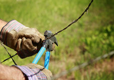 Cutting Barb Wire Royalty Free Stock Photography