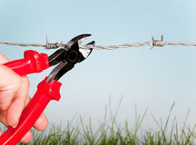 Cutting barbed wire Stock Images