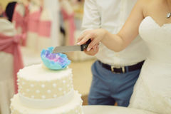 Cutting Beautiful Cake Together Royalty Free Stock Photo