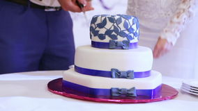 Cutting beautiful cake stock video footage