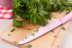 Cutting board with knife and parsley chopping Royalty Free Stock Photography