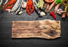Cutting Board with a variety of shrimp, fish and shellfish. Stock Photos