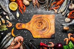 Cutting Board with a variety of shrimp, fish and shellfish. Fresh seafood. Cutting Board with a variety of shrimp, fish and shellfish. On a black chalkboard Royalty Free Stock Image