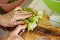 Cutting bok choy Stock Images