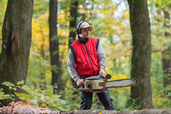 Cutting a branch with chainsaw Royalty Free Stock Image