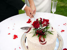 Cutting the cake. Bride and groom cutting the wedding cake Stock Image