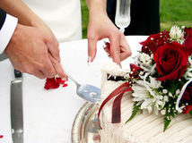 Cutting the cake. Bride and groom cutting the wedding cake Royalty Free Stock Image