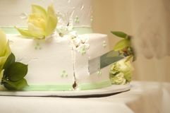 Cutting the cake Royalty Free Stock Images