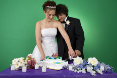 Cutting the Cake. A couple with their wedding cake royalty free stock photos