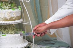 Cutting the Cake. This is a photo of a wedding cake being cut royalty free stock photography