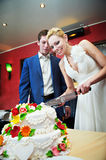 Cutting the cake newlyweds Royalty Free Stock Photo