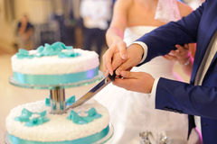 Cutting cake together Stock Photos