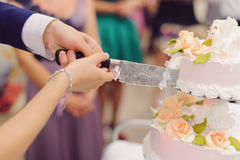 Cutting Cake Together Royalty Free Stock Photo