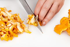 Cutting chanterelles Royalty Free Stock Photos
