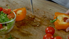 Cutting Cherry Tomatoes and Bell Peppers stock video footage