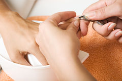 Cutting cuticle Stock Images