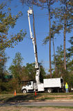 Cutting a dead tree down. A single man in the bucket of a cherry picking truck, cutting down a dead pine tree against a blue sky with another man watching from Royalty Free Stock Image