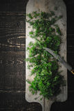 Cutting dill on the wooden board vertical Stock Images