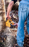 Cutting Down a Tree. A man chainsaws through a tree to cut it down Stock Photography