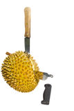 Cutting a durian fruit. Royalty Free Stock Photography