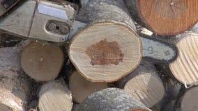 Cutting firewood in farm yard  with a chainsaw stock footage