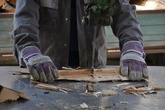 Cutting firewood Stock Image