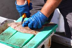 Cutting fish Stock Images