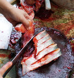Cutting fish. Cutting Pangasius fish for cooking in Thailand Stock Images