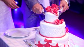 Cutting and folding plates on the wedding cake. Wedding couple. Three layers cake stock video