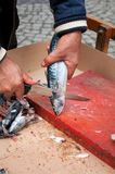 Cutting fresh fish Royalty Free Stock Images