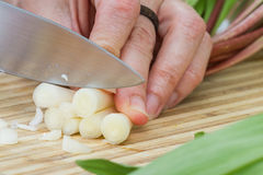 Cutting fresh ramps. Slicing and dicing fresh organic ramps or wild leeks on a cutting board Royalty Free Stock Photo