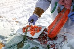 Cutting frozen fish, salmon, on fillets. Red kitchen board, hands in special blue gloves.  Royalty Free Stock Image