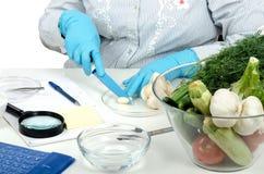 Cutting a garlic clove in phytocontrol laboratory. Phytocontrol technician hands cutting a garlic clove in phytosanitary laboratory Stock Images