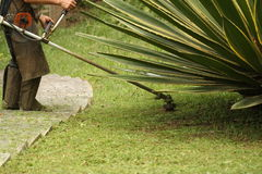 Cutting grass Royalty Free Stock Photos