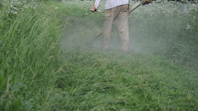 Cutting grass. Dense water rain dew drops rise from worker man with trimmer cut mow wet high grass after rain stock footage