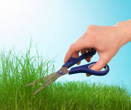 Cutting grass by hairdressing scissors Royalty Free Stock Image