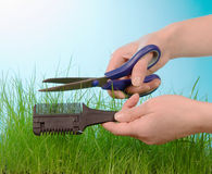 Cutting grass by hairdressing scissors Royalty Free Stock Images