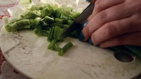 Cutting Green Fresh Onion. On table. The onion plant has a fan of hollow, bluish-green leaves and the bulb at the base of the plant begins to swell when a stock video footage