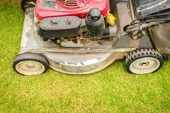 Cutting green grass in yard with lawnmower. Stock Images