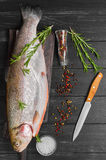Cutting gutted red fish trout. Sweetfish on board, spices trout rosemary, different kinds of peppers, salt, dark black wood background, rustic style, top view Stock Images
