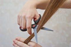 Cutting hair Stock Image