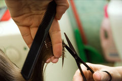 Cutting hair. Hair cutting: hair stylist at work with scissors royalty free stock photo