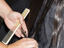 Cutting the hair tips Royalty Free Stock Photography