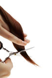 Cutting hair on white Royalty Free Stock Images